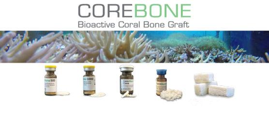 COREBONE – bioaktywny materiał kościozastępczy wytworzony z korala