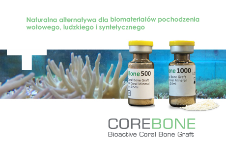 NEWS_corebone_03